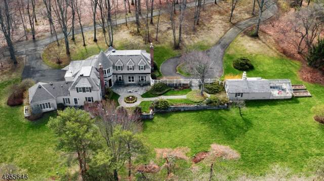 451 Claremont Rd, Bernardsville Boro, NJ 07924 (MLS #3610462) :: The Dekanski Home Selling Team