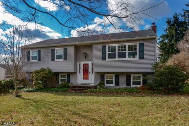 20 Hillside Rd, Mansfield Twp., NJ 07840 (MLS #3610636) :: REMAX Platinum