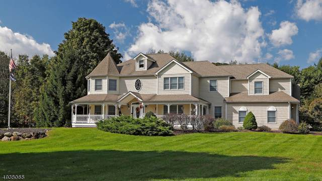 2 Peach Tree Ln, Kinnelon Boro, NJ 07405 (MLS #3610675) :: REMAX Platinum