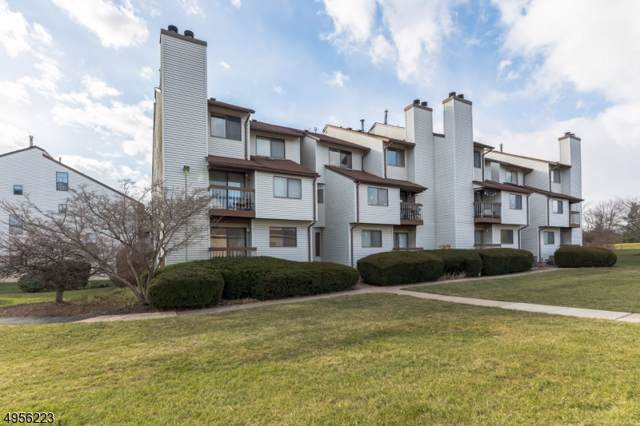 3501 Richmond Ct, Hillsborough Twp., NJ 08844 (MLS #3610689) :: Pina Nazario