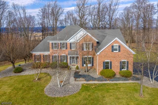 7 Rockhill Dr, Bethlehem Twp., NJ 08827 (#3610734) :: Jason Freeby Group at Keller Williams Real Estate