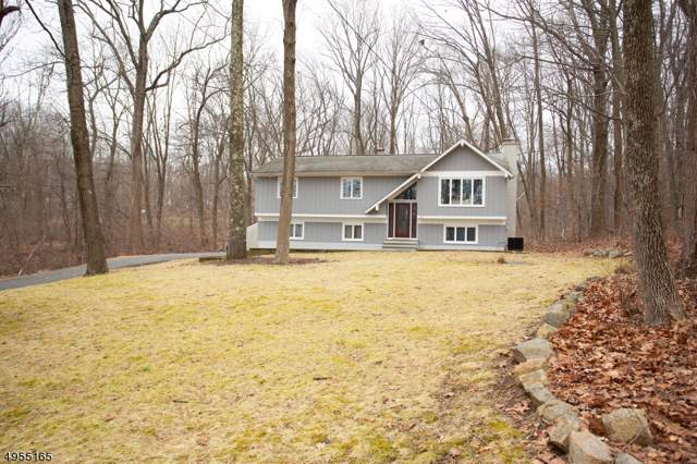 13 Warren Dr, Mount Olive Twp., NJ 07828 (MLS #3610766) :: The Lane Team