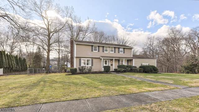 4 Hoover Pl, Wayne Twp., NJ 07470 (#3611025) :: NJJoe Group at Keller Williams Park Views Realty