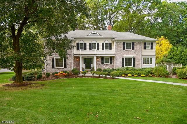 51 Greenbriar Drive, Summit City, NJ 07901 (MLS #3611034) :: SR Real Estate Group