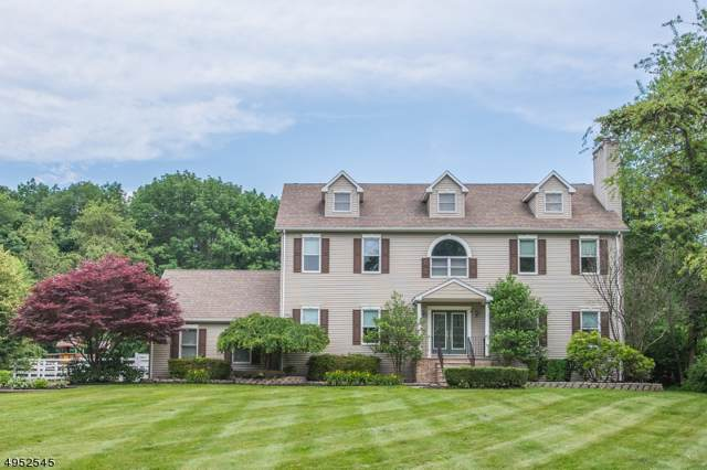 215 Flanders-Netcong Rd, Mount Olive Twp., NJ 07836 (MLS #3611056) :: The Lane Team