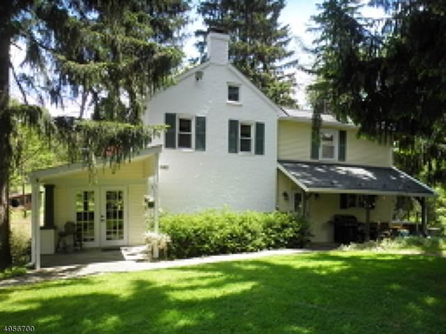 464 Buckhorn Dr, White Twp., NJ 07823 (#3611062) :: NJJoe Group at Keller Williams Park Views Realty