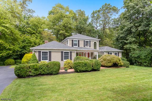 15 Regent Cir, Bernards Twp., NJ 07920 (MLS #3611137) :: Mary K. Sheeran Team