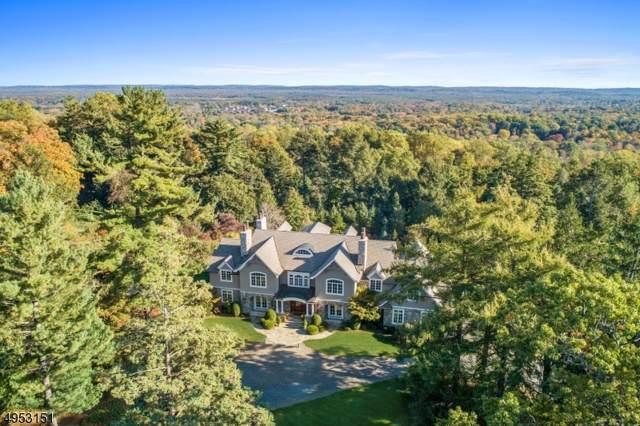 23 Van Cortland Way, Bernards Twp., NJ 07920 (MLS #3611159) :: SR Real Estate Group