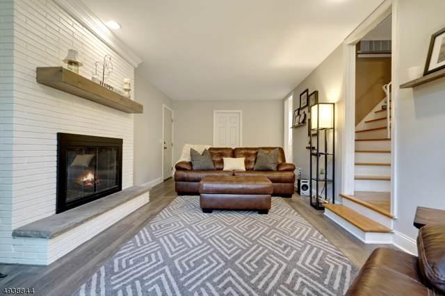 1045 Rector Rd, Bridgewater Twp., NJ 08807 (MLS #3611303) :: SR Real Estate Group
