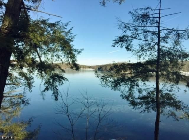 913 Greenwood Point, Stillwater Twp., NJ 07860 (MLS #3611535) :: Mary K. Sheeran Team