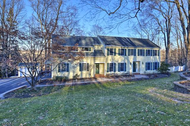 8 Eagle Nest Rd, Morris Twp., NJ 07960 (MLS #3611582) :: SR Real Estate Group