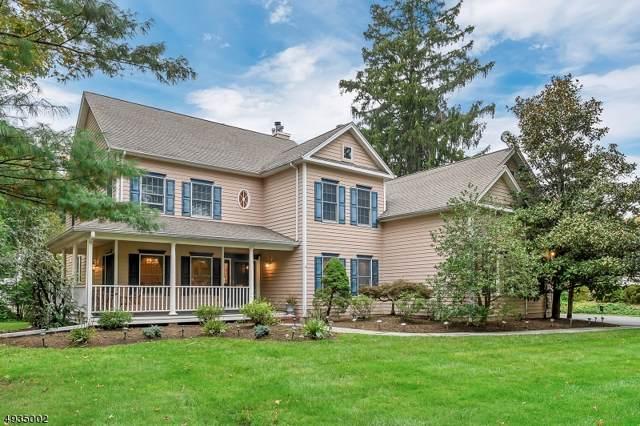 106 Intervale Rd, Mountain Lakes Boro, NJ 07046 (MLS #3611859) :: William Raveis Baer & McIntosh