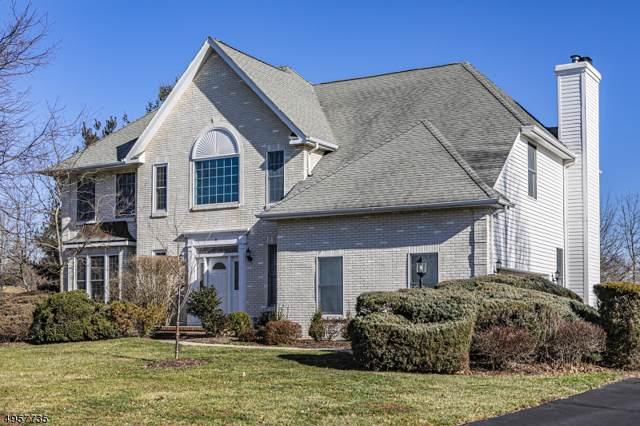 9 Colonial Ct, Montgomery Twp., NJ 08558 (MLS #3611956) :: Weichert Realtors