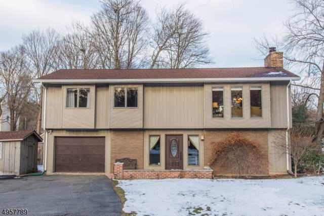 16 Carriage Ln, West Milford Twp., NJ 07480 (MLS #3612010) :: SR Real Estate Group