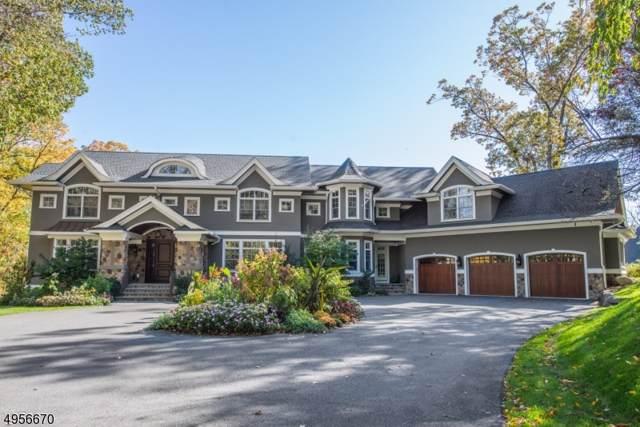 100 Laurel Hill Road, Mountain Lakes Boro, NJ 07046 (MLS #3612285) :: SR Real Estate Group