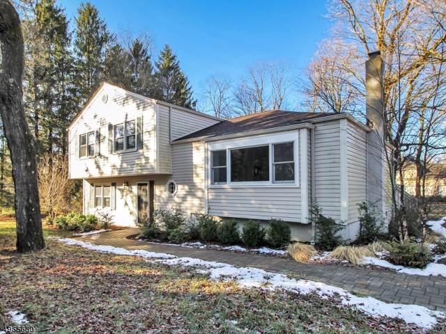 266 Dover-Chester Rd, Randolph Twp., NJ 07869 (MLS #3612450) :: SR Real Estate Group