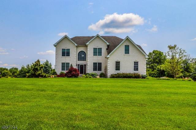 6 Balmoral Dr, Alexandria Twp., NJ 08867 (MLS #3612661) :: SR Real Estate Group