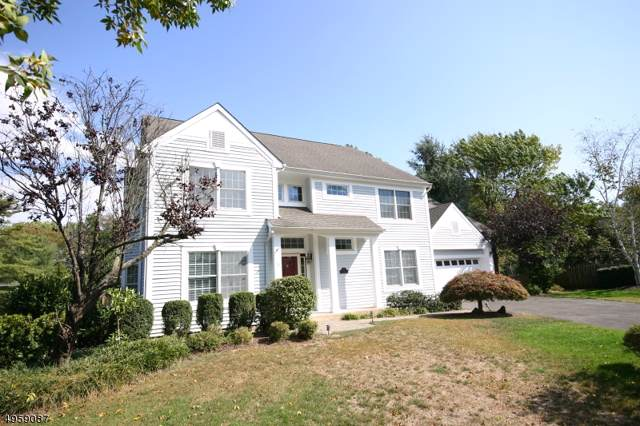 12 Frost Ln, New Providence Boro, NJ 07974 (MLS #3613052) :: Mary K. Sheeran Team