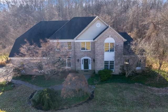 9 Rapp Rd, Alexandria Twp., NJ 08848 (MLS #3613295) :: SR Real Estate Group