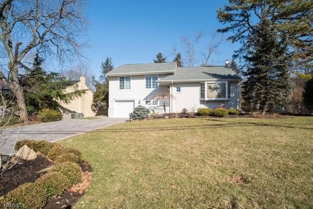 199 E Madison Ave, Cresskill Boro, NJ 07626 (MLS #3613661) :: William Raveis Baer & McIntosh