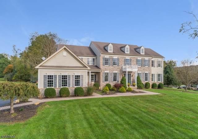 12 Perry Rd, Clinton Twp., NJ 08801 (MLS #3613764) :: The Dekanski Home Selling Team