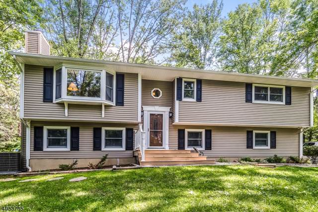 17 Deerpath Rd, Lebanon Twp., NJ 07830 (MLS #3613913) :: Weichert Realtors