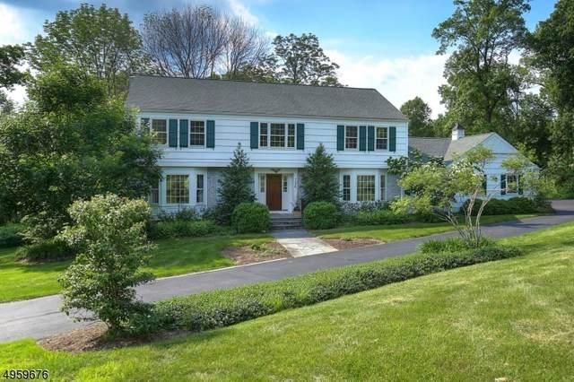 126 Lees Hill Rd, Harding Twp., NJ 07920 (MLS #3614082) :: The Sue Adler Team