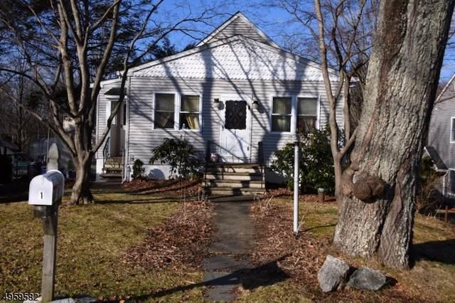 1 Smithville Rd, West Milford Twp., NJ 07421 (MLS #3614580) :: REMAX Platinum