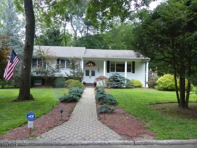 10 Deer Trl, Old Tappan Boro, NJ 07675 (#3614750) :: Bergen County Properties