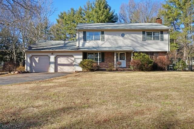 124 Sunset Rd, Montgomery Twp., NJ 08502 (MLS #3616272) :: The Dekanski Home Selling Team