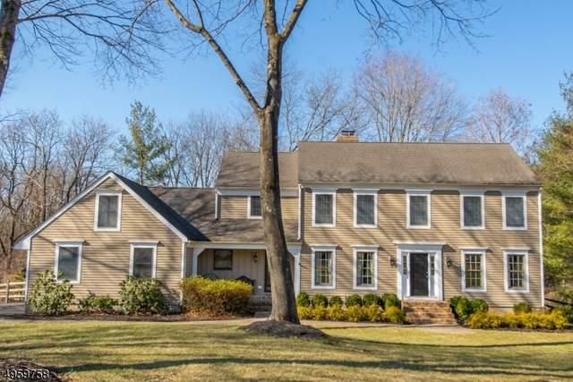 11 Pheasant Run, Peapack Gladstone Boro, NJ 07934 (MLS #3616924) :: Vendrell Home Selling Team
