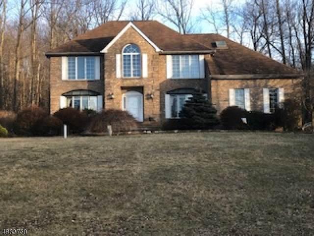 1 Cecilia Ct, Vernon Twp., NJ 07462 (MLS #3617106) :: Vendrell Home Selling Team