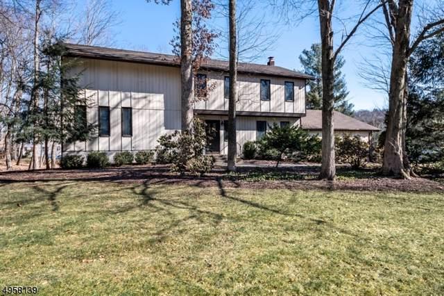 5 Blue Fern Ln, Randolph Twp., NJ 07869 (MLS #3617196) :: The Douglas Tucker Real Estate Team LLC