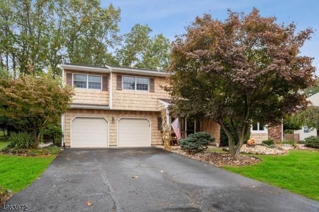 17 London Dr, East Brunswick Twp., NJ 08816 (MLS #3617279) :: Coldwell Banker Residential Brokerage