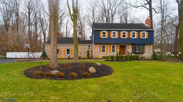 51 Dearborn Dr, Old Tappan Boro, NJ 07675 (#3617374) :: Bergen County Properties