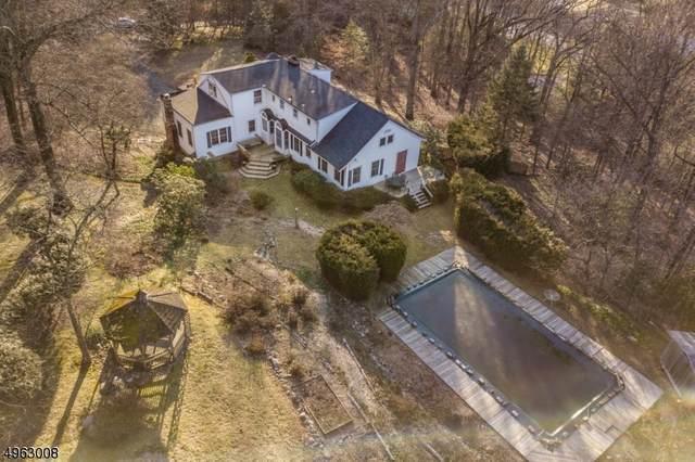 18 Old Boonton Road, Denville Twp., NJ 07834 (MLS #3617510) :: The Douglas Tucker Real Estate Team LLC