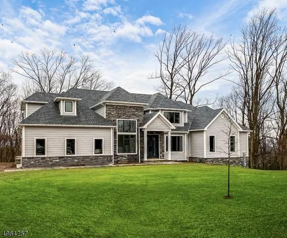 6 Minor Ct, Denville Twp., NJ 07834 (MLS #3617543) :: The Douglas Tucker Real Estate Team LLC