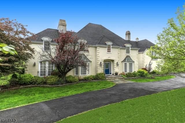 5 Shenandoah Ct, Washington Twp., NJ 07830 (MLS #3618013) :: William Raveis Baer & McIntosh