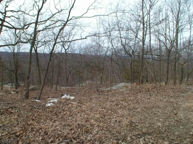 13 Hidden Valley Dr, Vernon Twp., NJ 07462 (MLS #3618167) :: Vendrell Home Selling Team