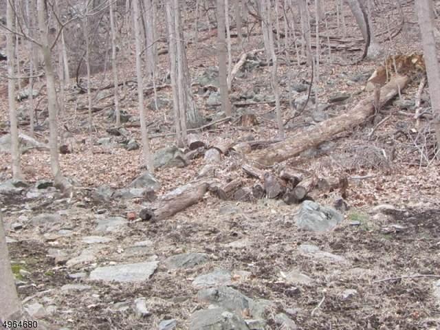 29 Ledgewood Trail, Sparta Twp., NJ 07871 (MLS #3618304) :: The Lane Team