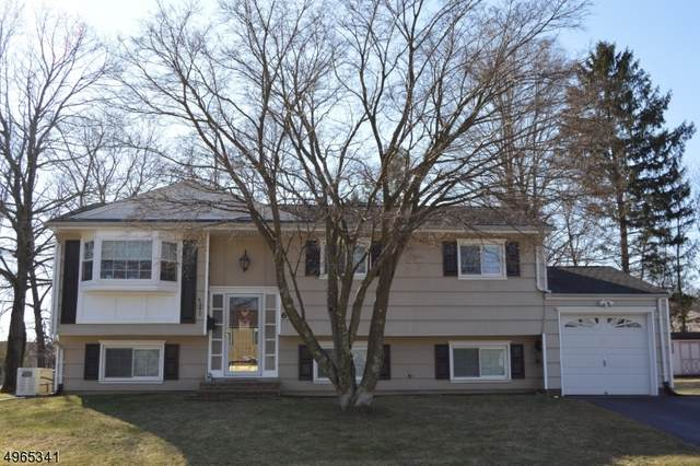 6 Ann St, Roxbury Twp., NJ 07876 (MLS #3618486) :: The Douglas Tucker Real Estate Team LLC
