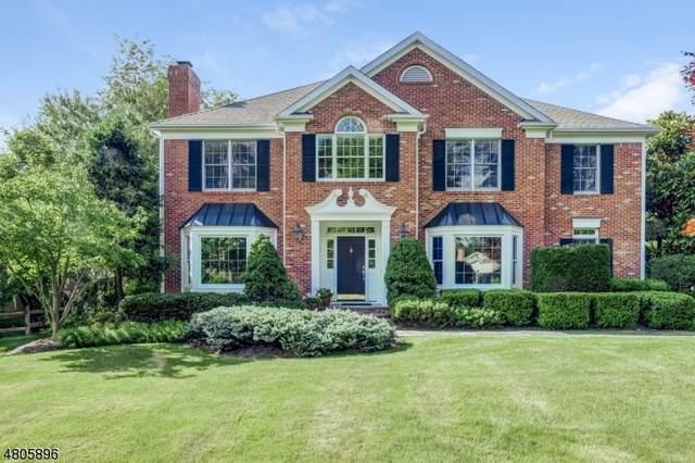193 Noe Ave, Chatham Twp., NJ 07928 (MLS #3618568) :: SR Real Estate Group