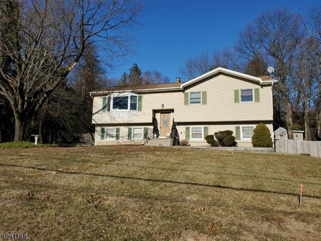14 Bridle Ln, Mount Olive Twp., NJ 07828 (#3619243) :: Daunno Realty Services, LLC