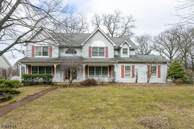 1 Deer Path, Bloomsbury Boro, NJ 08804 (MLS #3619282) :: Coldwell Banker Residential Brokerage