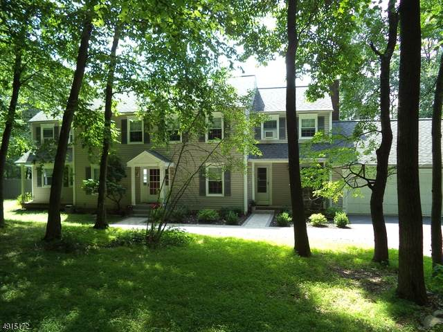 310 N Polktown Rd, Bethlehem Twp., NJ 08826 (MLS #3619558) :: The Debbie Woerner Team