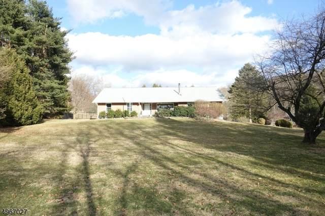 171 Lake Just-It Rd, Hope Twp., NJ 07844 (MLS #3619926) :: SR Real Estate Group
