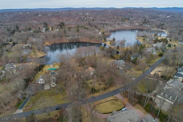 222 Green Ridge Rd, Franklin Lakes Boro, NJ 07417 (MLS #3619987) :: The Dekanski Home Selling Team