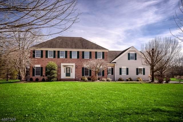67 Red Oak Way, Montgomery Twp., NJ 08502 (MLS #3620603) :: Mary K. Sheeran Team