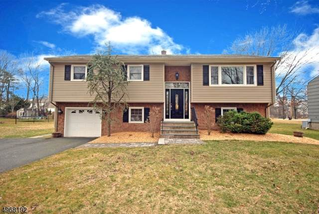48 Addie Lane, Hanover Twp., NJ 07981 (MLS #3621019) :: William Raveis Baer & McIntosh