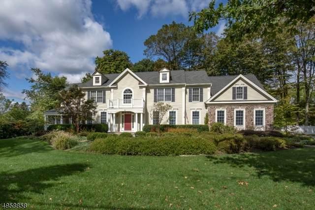 88 Fairmount Ave, Chester Boro, NJ 07930 (MLS #3621296) :: The Dekanski Home Selling Team